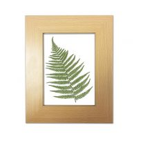 Beautiful Beech Wooden Photo / Picture Frame 5 x 7 (13cm x 18cm)